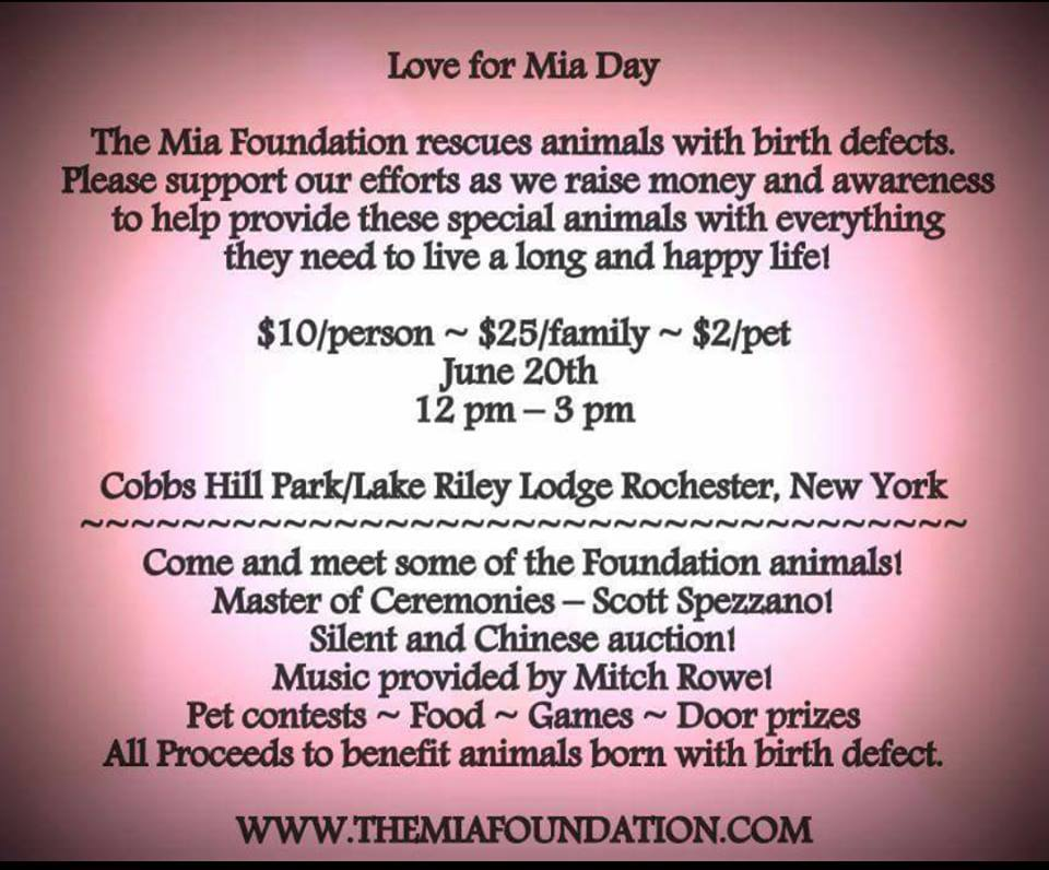 Love for Mia Day – K9 Orphans Inc